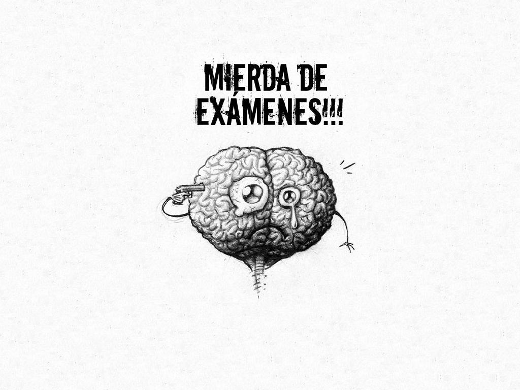 wallpaper_examen